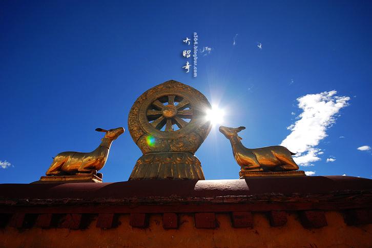 西藏拉萨-大昭寺,寺庙,大昭寺