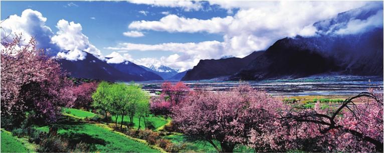 西藏林芝-桃花沟,西藏