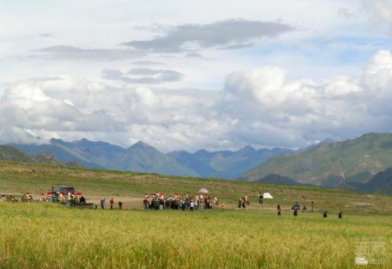 西藏那曲-申扎自然保护区,西藏,那曲,申扎