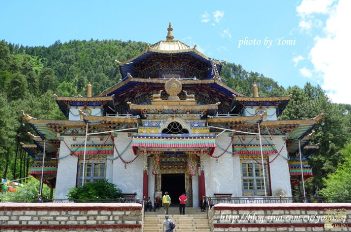 西藏林芝-布久喇嘛岭寺,西藏,那曲,拉萨。日喀则,阿里,山南