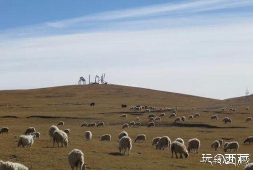 西藏那曲景点-杭措温泉,西藏,景点,那曲