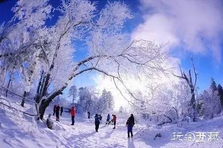 【西藏美图】雪乡,中国最美的冬天,西藏游记,西藏心灵,西藏户外,西藏攻略,西藏百科