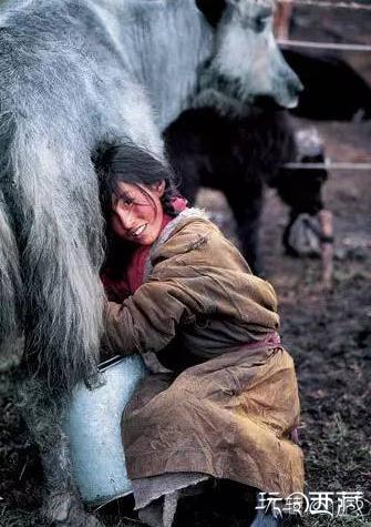 一下雪,西藏就美成了天堂…,西藏美图,西藏旅行,西藏攻略,西藏游记,户外攻略