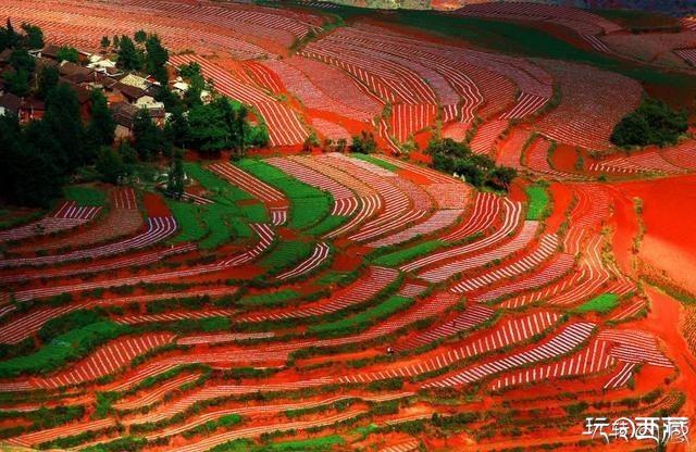 昆明东川红土地游玩攻略,风雨阳关下红土高原别致的美