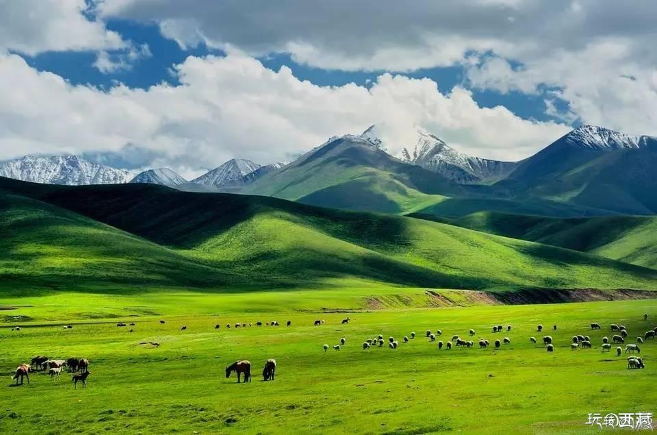 中��最美的100��草原,你去�^���?