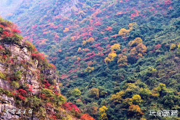 【三峡初冬行】掩不住两岸秋色的巫山小三峡